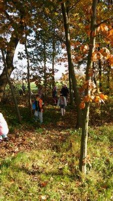 w poszukiwaniu jesieni_3