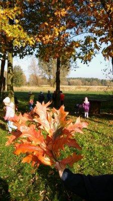 w poszukiwaniu jesieni_6